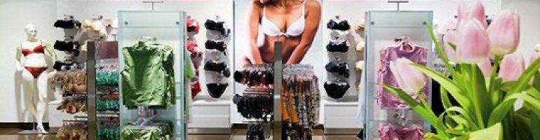 Готовый бизнес-план магазина нижнего белья с открытием