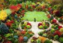 Типовой бизнес-план питомника растений и деревьев