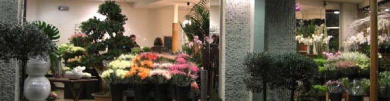 Готовый бизнес-план цветочного магазина с расчетами