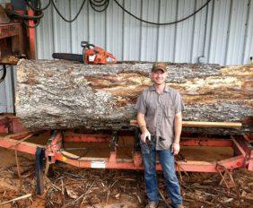 Готовый бизнес-план лесопилки с расчетами