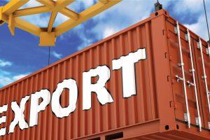 Анкета организации-экспортера для получения государственной гарантии