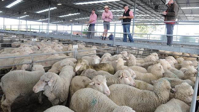 Сколько стоит запуск фермы