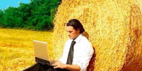 Какой бизнес можно открыть в деревне